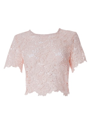 Anina - Faded Blush Guipure Lace